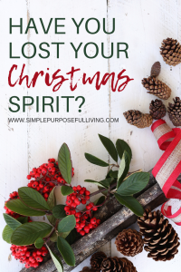 Have you lost your Christmas spirit? with holly
