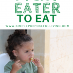 15 tricks to get a picky eater to eat