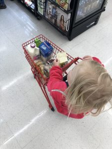 grocery shop with picky eaters