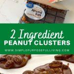 2 ingredient peanut cluster recipe