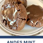 simple andes mint cookie recipe