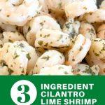 3-ingredient-cilantro-lime-shrimp