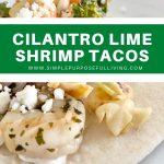 Cilantro-lime-shrip-tacos