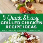 5 quick and easy grilled chicken recipe ideas